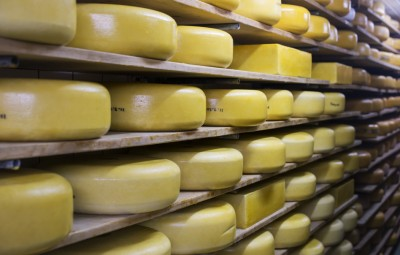 cheese exporter