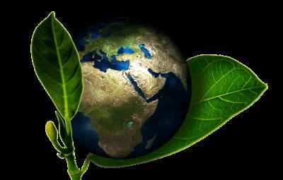social enterprises - earth
